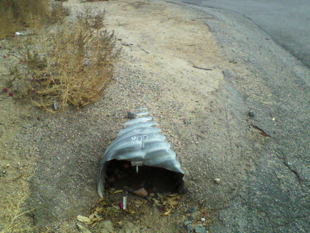 The above pipe exits approximately 80 feet away on the other side of Lakeview Terrace.
